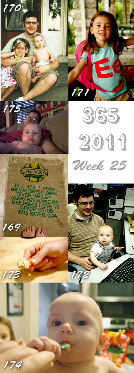 365 2011 Week 25