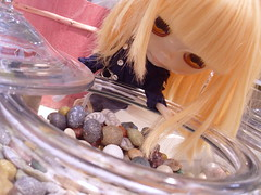 Into the candy jar
