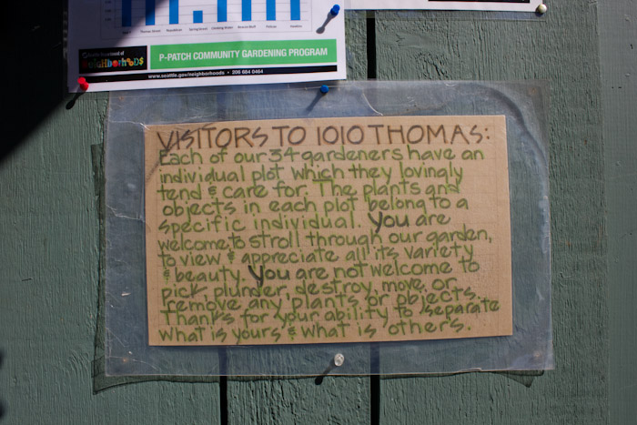 Thomas Street Community Garden.