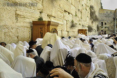 The Priestly benediction (David Mor) Tags: jerusalem blessing cohen passover westernwall pesach kotel morningprayer kohanim prayingshawl priesly aaronitischersegen bndictionsacerdotale  benosacerdotal