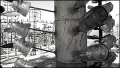 Code Line Insulators on the Bottle Tree Farm (greenthumb_38) Tags: california blackandwhite bw art blackwhite route66 artist bottles artistic mojave duotone bottletree mojavedesert motherroad sanbernardinocounty desertlife nationaltrails helendale rte66 themotherroad nationaltrailshighway elmerlong bottletreefarm elmersbottletreefarm jeffreybass natltrailshwy ludlowadventure2012