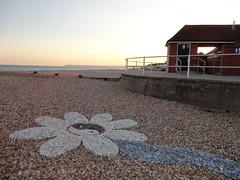 bexhill yin-yang sunflower 13 (Dr Geebers The Pebbleman) Tags: art beach rocks stones pebble sunflower yinyang 2012 bexhill