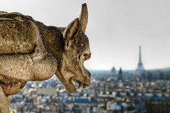 Gargoyle overlooking Eiffel Tower