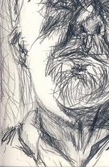 John Mignault (2) 2012.06.15 (Julia L. Kay) Tags: sanfrancisco party portrait woman art face female pencil paper sketch san francisco artist arte julia kunst kay daily dessin peinture portraiture 365 everyday dibujo graphite artista artiste knstler portraitparty 8b juliakay jkpp julialkay juliakaysportraitparty jkppfeed eightb
