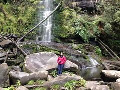 lorne 369 (raqib) Tags: holiday nature water trekking trek waterfall hiking victoria hike falls bushwalking vegetation rc lorne iphone erskine erskinefalls waterfallaustralia