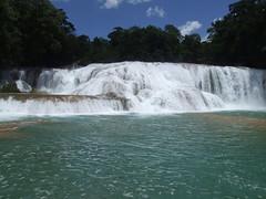 Mexiko - Agua Azul (ulfinger) Tags: water river mexico waterfall agua wasser wasserfall natur natura aguaazul fluss landschaft chiapas mexiko saltodeagua rioe