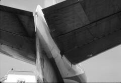 B&W Whaleplane! (Sir Hectimere) Tags: twa aeroplanes lhr boeing707 londonheathrowairport transworldairlines civilairliners jetairliners civilairlines starstream707