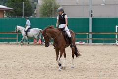 DSC05411_s (AndiP66) Tags: horse macro sports sport schweiz switzerland jumping sony july luzern sp di if juli alpha tamron concours pferd equestrian f28 solothurn ld horsejumping 70200mm wettbewerb 2014 springen kantonsolothurn balsthal springreiten cantonsolothurn wolhusen andreaspeters pferdespringen grueb martinameyer 77m2 a77ii ilca77m2 77ii 77markii slta77ii
