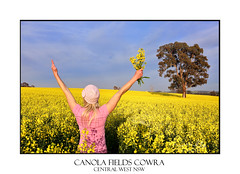 Canola fields in Cowra (sugarbellaleah) Tags: smiling woman success canola farming agriculture field yellow golden flowers female happiness joy exuberant sky blue clouds tree nature environment canolaoil crop farmland cowra nsw ausralia thankful gratitude wellness healthylife lifestyle natural alternative organic gumtree people adult armsraised morning sunshine