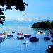 Seeblick auf Roseninsel