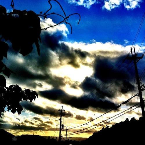 今日の写真 No.279 – 昨日Instagramへ投稿した写真(1枚)/iPhone4+Camera+