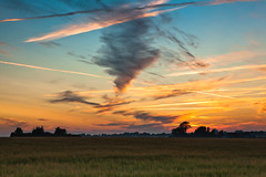 Skne By Night (Hannes R) Tags: trees houses sunset sky cloud house mist tree nature field grass fog night clouds skne sweden dusk farm grain rye crop crops scania