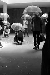 Russian pabilion (Andrey Hechuev | Андрей Хечуев) Tags: venice portrait blackandwhite bw white black girl rain umbrella canon gold grey search coin grigio bn biennale venise venezia pioggia bianco ritratto venedig nero danae biancoenero портрет ombrello ragazza oro venecija белый monete золото серый чёрный венеция даня goldrain канон scaladeigrigi зонт greysale чёрнобелое биеннале чёрнобелый золотойдождь венеція кэнон pioggiadorata