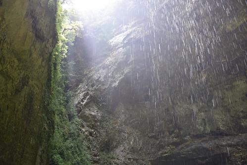 Rio Camuy Cave Park