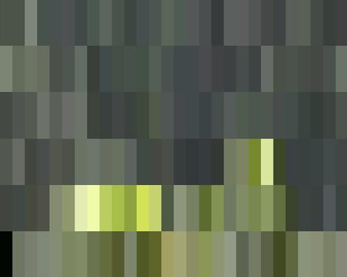 Mosaic Stills