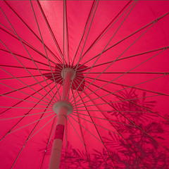 Spanish Spokes... (Lady Haddon) Tags: pink copyright umbrella canon sevilla spain europe spokes seville andalucia parasol canon5d 20mm andalusia allrightsreserved 2011 pinkumbrella restaurantumbrella kimhaddon kimhaddonphotography