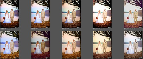 Wedding Collection Aperture Presets