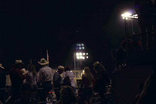 rodeo goers