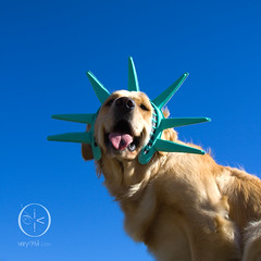 {27/52/2011} Miss Liberty (VeryViVi) Tags: usa dog statue goldenretriever liberty freedom doggy independenceday gettyimages missliberty 52weeksfordogs missvivigold veryvivi 4thofjuly2011