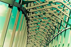 Missouri Bridge (Kylie Lanae) Tags: trip bridge blue sky window car st canon vintage photography eos louis shot kylie retro missouri 10d molegraaf