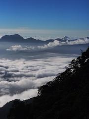 P9240134 (David.CY.Yang) Tags:  syuemountain   eastpeak snowmountain   taiwanmountainash taiwanlaughingthrush  usnea  dawn  holyridgeline   glacialcirque