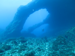 Underneath the arches (roger_forster) Tags: arches underwater diving scuba azores pico island naturallight blue sea water