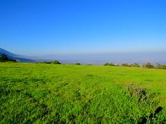 Green field (Ratee Rats) Tags: parque aguas ramn apoquindo salto trekking santiago chile canon sx50hs