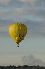 DSC_0138 (Michael P Bartlett) Tags: balloons hotairballoons adirondacks adirondackballoonfestival
