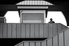 galata (Berkan Byktmbk) Tags: street streetphotography stairs streetphoto streetphotobw bw blackandwhite monochrome man window outdoor bridge geometry human fujifilm xt1