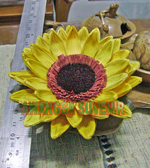 Klobot bunga matahari besar