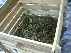Wooden bin being filled (StopFoodWaste) Tags: demo site clare demonstration master sit build composers composting 1862011