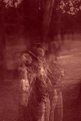 Havia muito espao para o silncio (o_sonha_dor) Tags: maria capa livro rodrigo guto carvalho neto marja imery revelo calafange