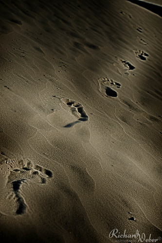 Walk of life.. by Rizzoweb