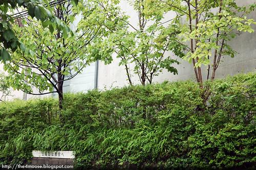 Ibaraki-Kasugaoka Church - Greens