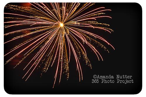 365-184_ALN_2061 by amaranthris