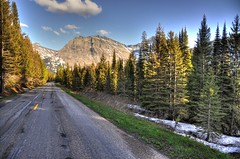 Coming From the Sun (Jeremy Bronson) Tags: mountain tree pine glacier roads glaciernationalpark hdr goingtothesunroad
