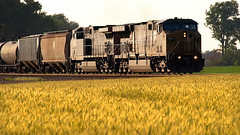 Southbound ethanol approaching Bagby Road (VFR Photography) Tags: railroad yellow rural train golden spring tn adams diesel farm tennessee farming engine railway trains engines transportation unionpacific locomotive agriculture ge railways hopper locomotives agricultural railroads lateafternoon generalelectric southernpacific southbound hoppers csx railroading winterwheat 6183 motivepower ac44cw dieselelectric 7033 robertsoncounty coveredhopper ac4460cw exsouthernpacific coveredhoppers hendersonsub sadlersville hendersonsubdivision bagbyroad ac4460cw7033 ac44cw6183