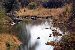 Victoria Falls_2012 05 24_1632 (HBarrison) Tags: africa hbarrison harveybarrison tauck victoriafalls zimbabwe zambeziriver mosioatunya