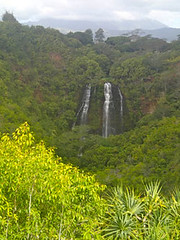 "Adventure Travel on Kauai • <a style=""font-size:0.8em;"" href=""http://www.flickr.com/photos/34335049@N04/14142134724/"" target=""_blank"">View on Flickr</a>"