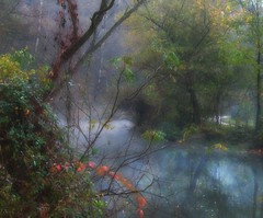 Dream of a river fairy...no longer exists:( (Sappho et amicae) Tags: reflection fall forest canon river landscape mood sapphoetamicae eljkagavrilovi