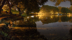 september song (Sergey S Ponomarev) Tags: sergeyponomarev canon eos 70d night notte kirov vyatka viatka wjatka russia russie russland europe september settembre autumn fall 2016 hdr highdynamicrange landscape paysage paesaggio lake water pond le zenith zenitar fisheye willow trees lights lanterns bridge romance pool                   walk