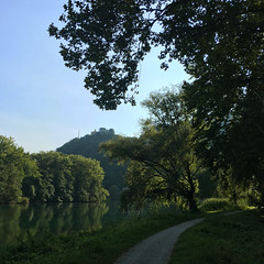 (Paolo Cozzarizza) Tags: italia lombardia lecco olginate acqua riflesso alberi sentiero prato