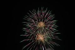 Fourth of July fireworks (av8s) Tags: fireworks photography nikon d7100 sigma pennsylvania pa 18250mm july4th 4thofjuly