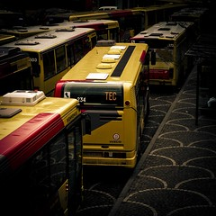 TEC= Transport en Coma (Gilderic Photography) Tags: street city urban en bus public work square lumix europe place traffic belgium belgique belgie transport panasonic stop strike service common rue liege greve tec manifestation trafic lightroom carre arret panne 500x500 saintlambert commun gilderic lx3 dmclx3