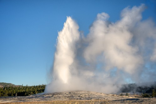 Old Faithful Erupts #1