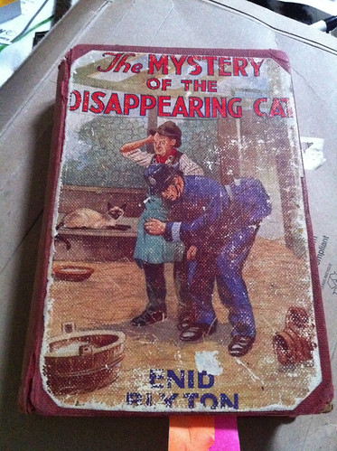Enid Blyton's The Mystery of the Disappearing Cat
