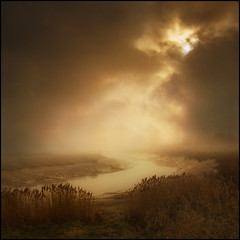 Follow the River (adrians_art) Tags: plants mist water fog reflections river reeds earlymorning wetlands marshland