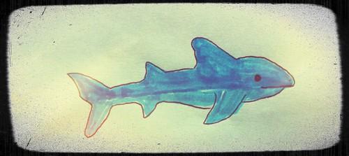 Shark Doodle