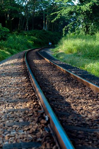 A idyllic walk along the tracks