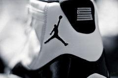 The Concords (LuisFromLA) Tags: macro closeup canon shoes bokeh sneakers commercial t3i jumpman concords jordans snearhead